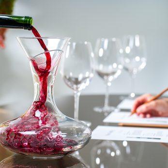 Dozenten Wein Sensorik