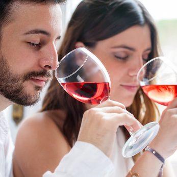 Weinseminar Sensorik und Weinwissen