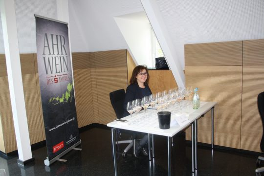 Claudia Stern Jury
